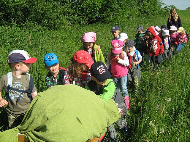 Kinder unterwegs am Waldtag