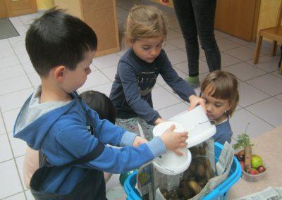 Jedes Kind leert seine Kartoffeln in den Korb