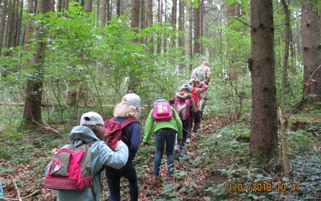 Waldtag der Vorschüler mit dem Förster und einer Waldpädagogin